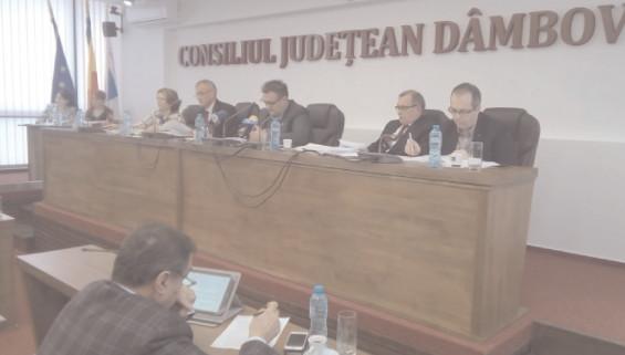 """Judeţul Dâmboviţa este reprezentat în ADI Apă, Asociaţia Dâmboviţa-Santarem, ADI """"CIVITAS TÂRGOVIŞTE"""", Polul de competitivitate """"POL AUTO MUNTENIA"""" şi ADI """"SITUAŢII DE URGENŢĂ SUD MUNTENIA"""" de vicepreşedinţii CJ, Claudia Gilia şi Alin Manole"""
