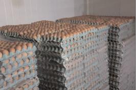 Controalele inspectorilor sanitar veterinari privind ouăle provenite din comerţul intracomunitar