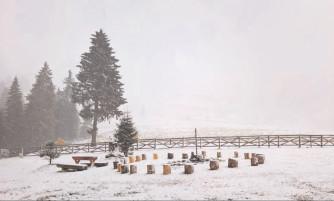 Dâmboviţa, sub cod galben de vant şi ninsori viscolite în zona montană