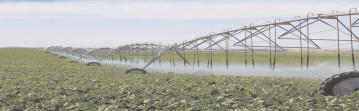 200 milioane de euro pentru investiţii în infrastructura secundară de irigaţii