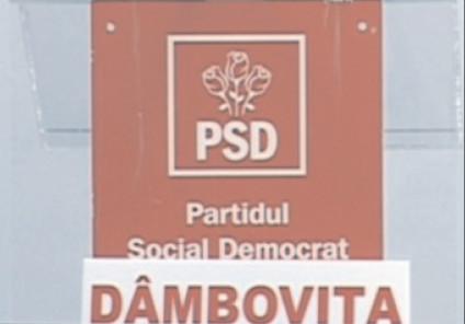 PSD Dâmboviţa susţine declaraţia fostului ministru al Muncii, Lia Olguţa Vasilescu pe subiectul pensiilor militare plafonate