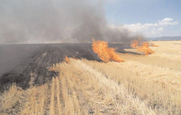 "ISU ""Basarab I"" Dâmboviţa a acţionat la foc continuu"