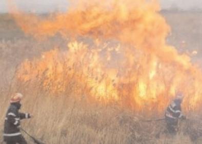 Fermierii care ard miriştile riscă sancţiuni financiare