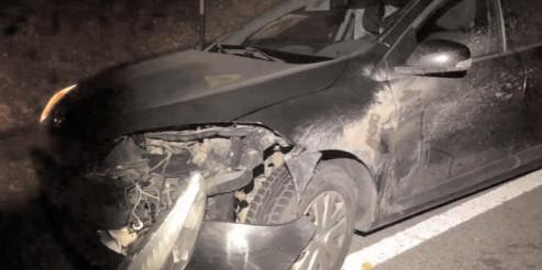 Două căprioare accidentate mortal, pe două drumuri diferite din judeţul Dâmboviţa