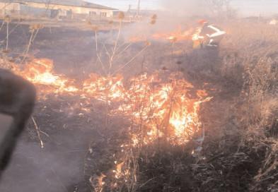 48 incendii de vegetaţie le-au dat de muncă pompierilor dâmboviţeni în ultima săptămână
