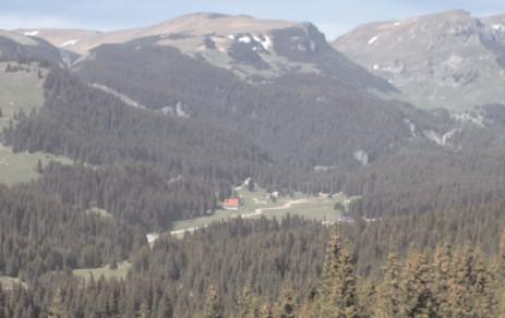 """APIA Dâmboviţa a autorizat la plată, pentru schema de ajutor """"servicii de silvomediu"""", suprafeţe însumând 955 hectare"""