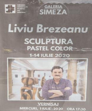 """bookbox Părăsirea formelor dure Liviu Brezeanu, Sculptură. Pastel color, Galeria ,,Simeza"""", Bucureşti, iulie, 2020"""