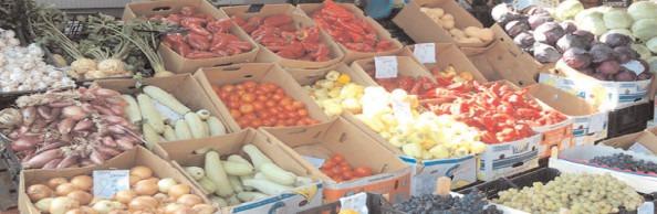 Controale ample în sectorul produselor alimentare de origine nonanimală