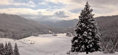 Agenţia Naţională a Zonei Montane a demarat procedura pentru Constituirea Comitetelor de Masiv