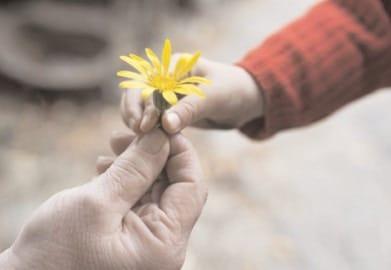 17 februarie, Ziua Bunătăţii Spontane