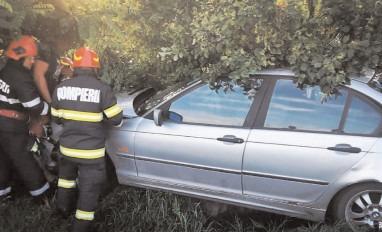 Beat şi fără permis, a ajuns cu maşina într-un copac