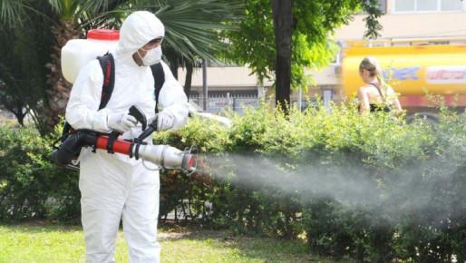 Primăria Târgovişte repetă acţiunea de combatere a insectelor prin pulverizare la sol