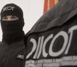 GRUPĂRI DE CRIMINALITATE ORGANIZATĂ, DESTRUCTURATE ÎN PRIMELE 7 LUNI ALE ANULUI