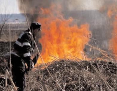 Incendiile de vegetaţie au început să se înmulţească
