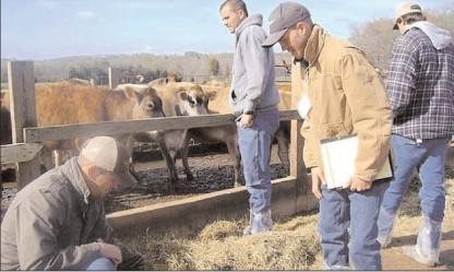 APIA începe în 16 octombrie plăţile în avans către fermieri