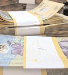 Estimări moderate pentru rata de schimb valutar