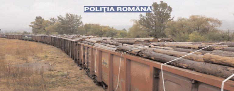 ACŢIUNE EUROPEANĂ PENTRU SIGURANŢA TRANSPORTURILOR FEROVIARE