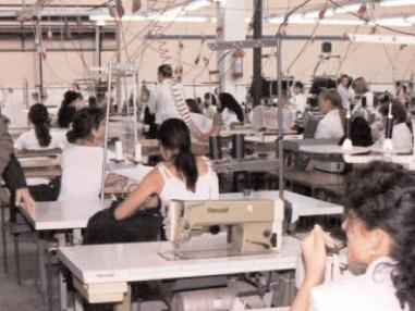 Angajatorii pun la bătaie 210 locuri de muncă