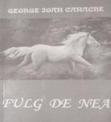 bookbox Disipări Fulg de nea, de George Ioan Canache, Editura Artmontania
