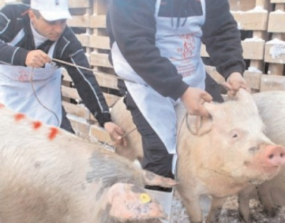 Micii fermieri pot accesa sprijin financiar nerambursabil de 15000 de euro/proiect